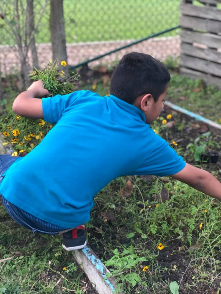 boy gardening at community garden