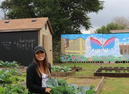 The Brownsville Herald: Volunteers beautify Tres Angeles Community Garden