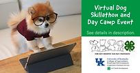 Virtual Dog Skillathon and Day Camp Even