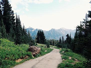 in cammino sul sentiero di montagna