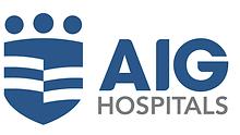 AIG Main Logo_Blue.png