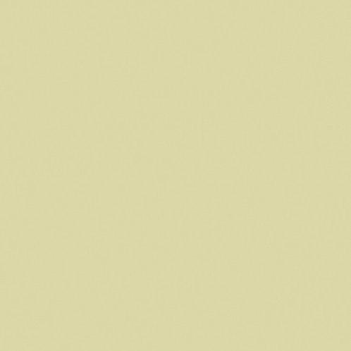 Little Greene Olive Oil Paint