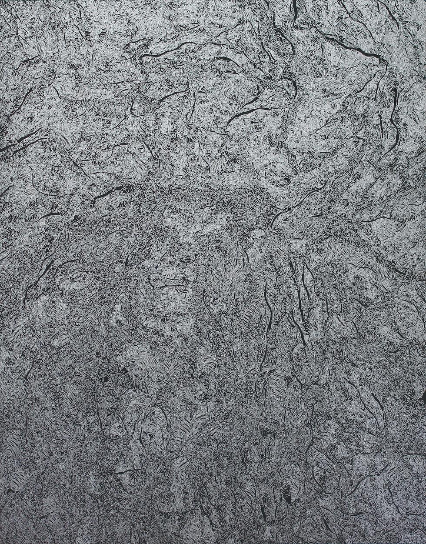 silver skin 01 910×727㎜  ink on blackboard  2019