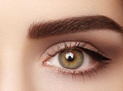 Eyebrow Tinted & Shaped