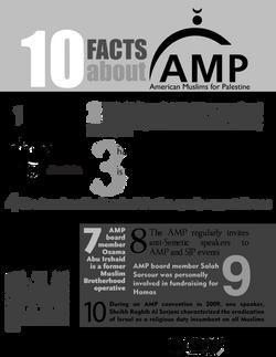 AMP Fact Sheet
