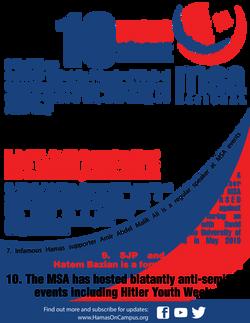 MSA Fact Sheet