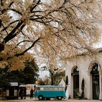 weddingmarket13.jpg