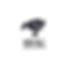 jingdong_logo_client.png