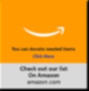 Amazon.jpg.png