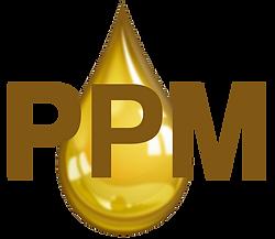 Gold Logo (1).png