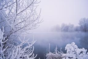 winter-fog-1323462087o5i.jpg