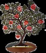 עץ רימונים ברכות