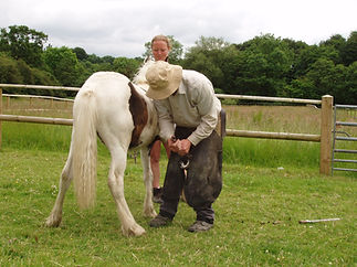 Pony and Farrier