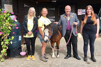 H.A.C.K. Horse Community