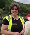 H.A.C.K. Horse Helen