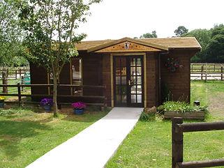 Horse Rescue facilities