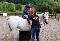 H.A.C.K. Horse Sanctuary