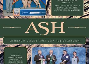Hickory Creek Mastiffs Publications