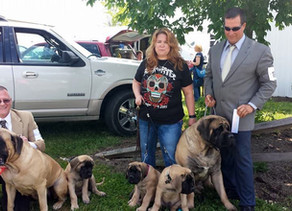 Diesel takes his kids to a show!