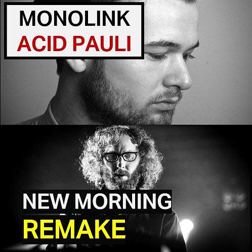 Monolink & Acid Pauli - New Morning Remake    Deep House Tutorial   Ableton Proj