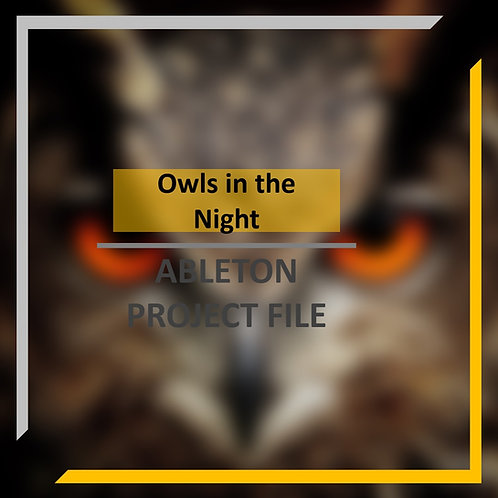 Owls in the night Template | Ableton Live Tutorial