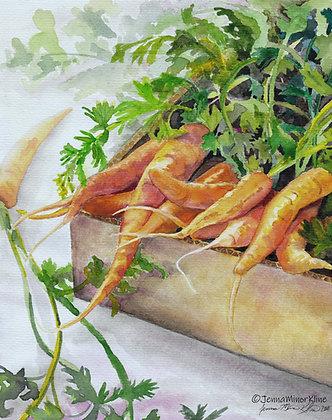 Carrots in Cardboard