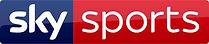ssn logo.jfif