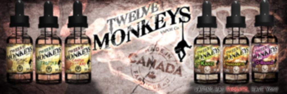 lelectroklop Twelve Monkeys