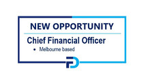 ***NEW OPPORTUNITY*** Chief Financial Officer