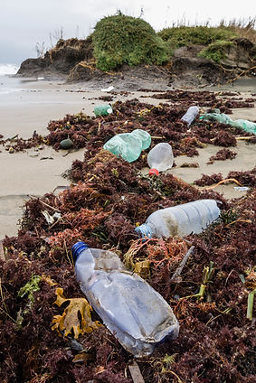 Keep plastic out of the ocean