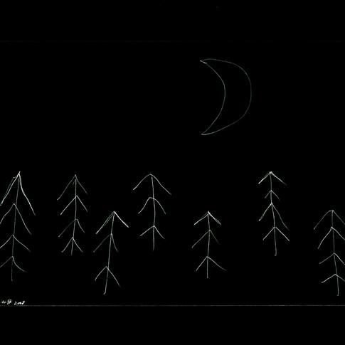 Midnight Garden cycle5 6
