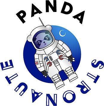 Panda habillé en astronaute