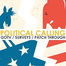 Political - Services.png