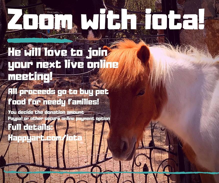 Zoom with iota web.jpg