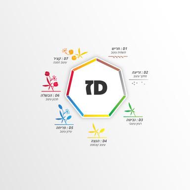 L-NET Dז Project