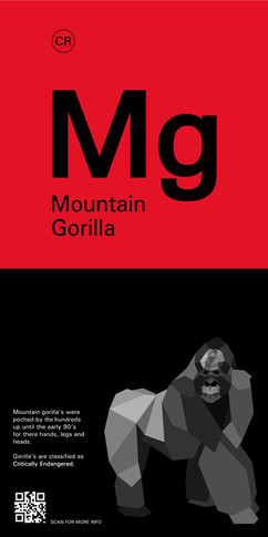 Zoo Sign 1 (Mountain Gorilla)