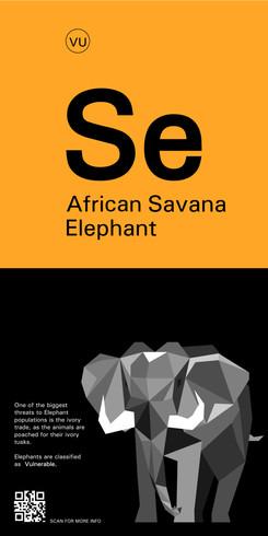 Zoo Sign 4 (African Savana Elephant)