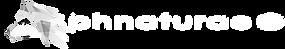 logo_Husky chiaro_sito.png