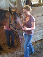 Equine Therapy St. Louis, MO - EAGALA