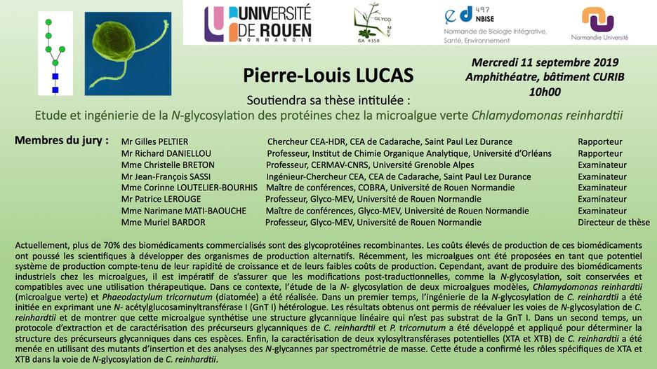 Le 11 septembre 2019 à 10h00, Pierre-Louis LUCAS soutiendra sa thèse au CURIB (Université de Rouen N