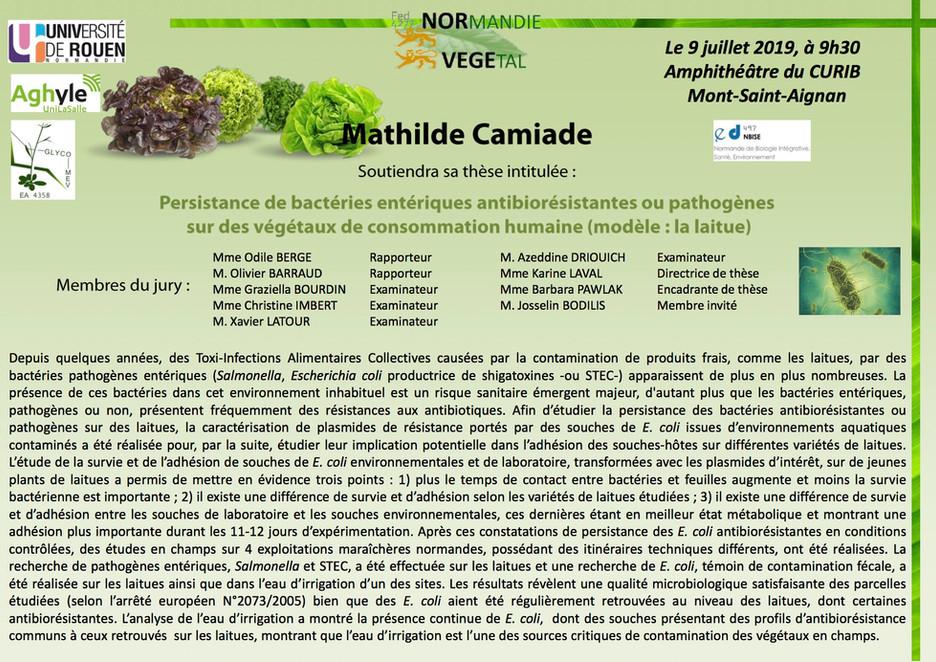 Le 9 juillet 2019 à 9h30, Mathilde Camiade soutiendra sa thèse au CURIB (Université de Rouen Normand
