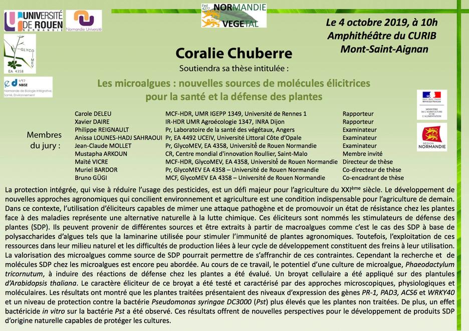 Le 4 octobre 2019 à 10h00, Coralie CHUBERRE soutiendra sa thèse au CURIB (Université de Rouen Norman