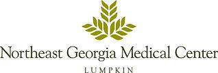 NGMC-logo-Lumpkin-Regular-color-outlined