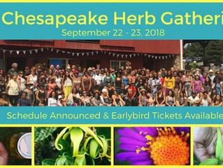 Chesapeake Herb Gathering