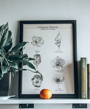 The Common Flowers, botany print