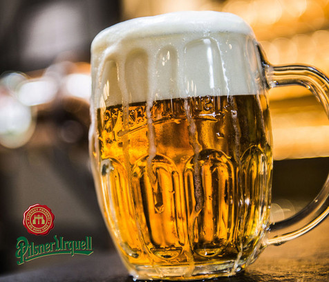 Heliport Bohuňovice - restaurace, denní menu