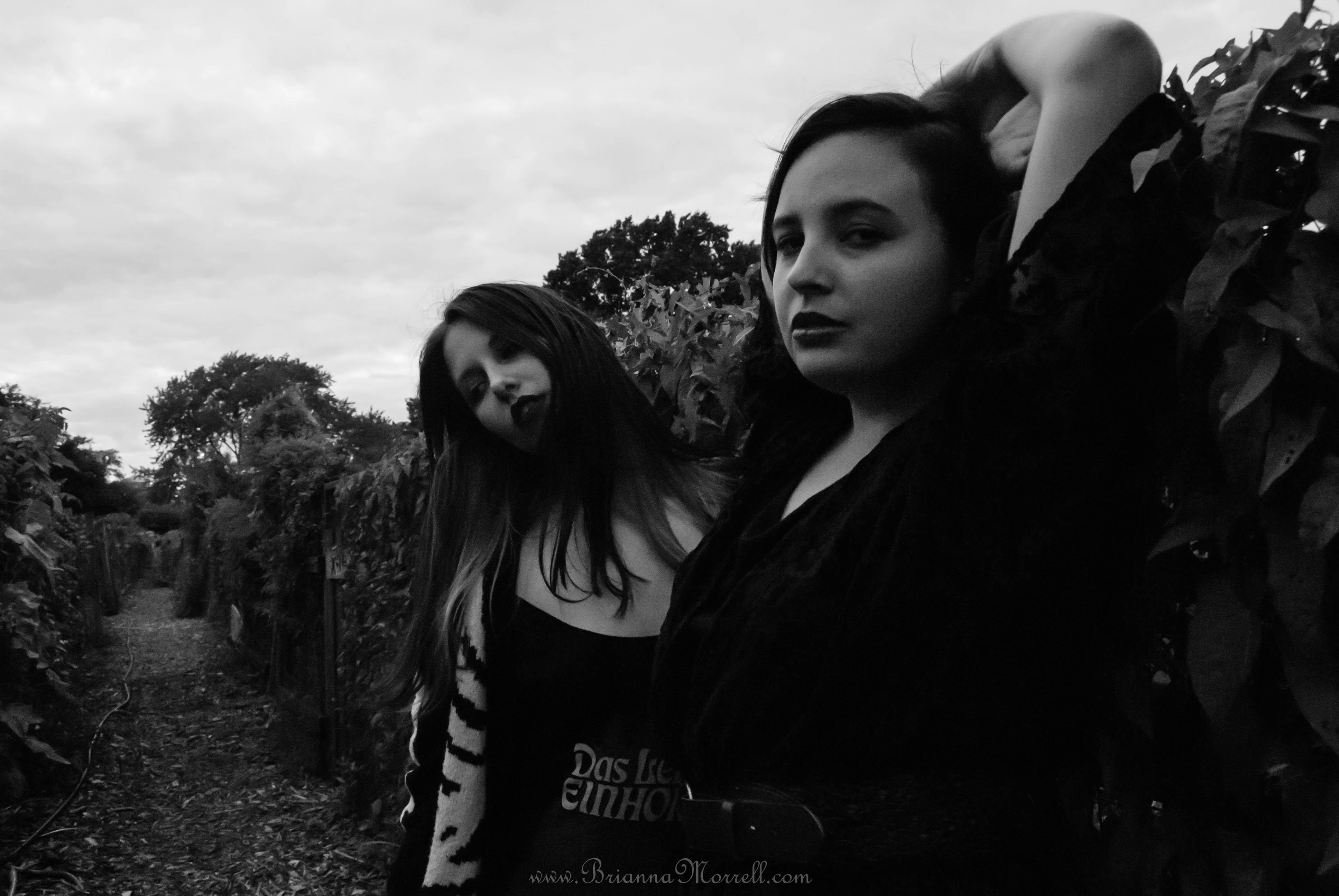 Sienna Luna & Collibrina