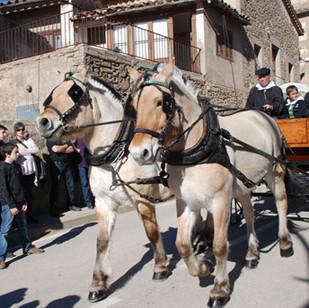 candelera-va-rebre-visitants-comarca-for