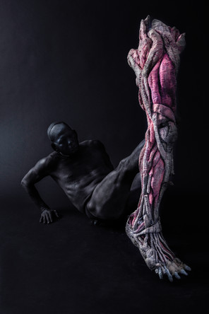 BodyConcert_Leg1.jpg