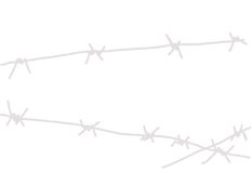 barbwire_PNG92216_edited.png